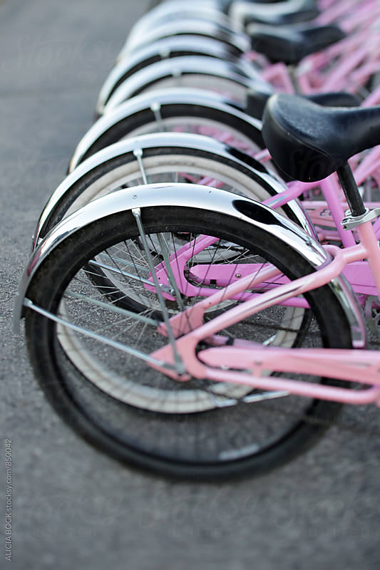 A Row Of Pink Bicycles by ALICIA BOCK for Stocksy United