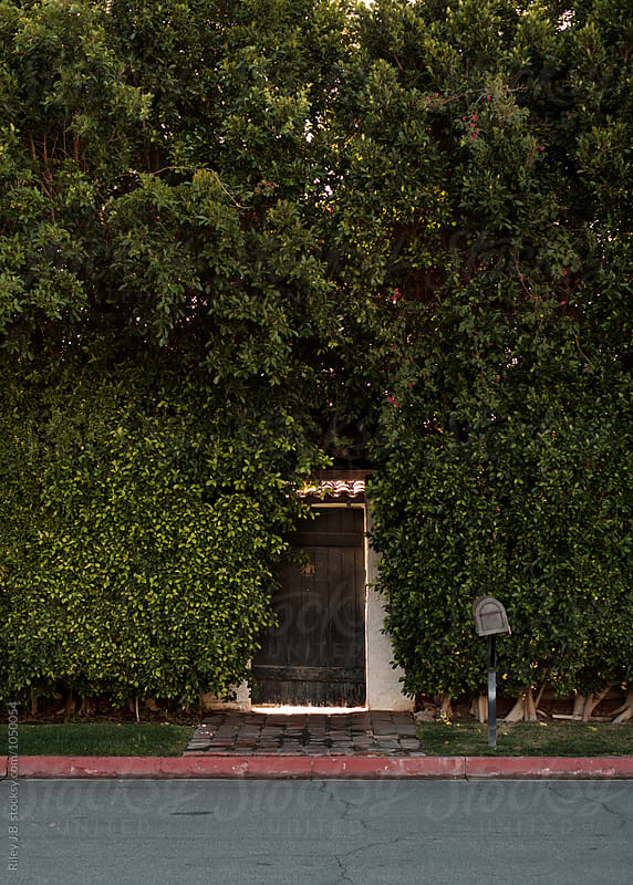 A rustic gate in a large hedge wall outside a residence by Riley J.B. for Stocksy United