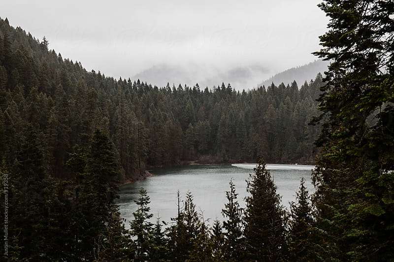 A hidden lake in the mountains of Eastern Washington.  by Justin Mullet for Stocksy United