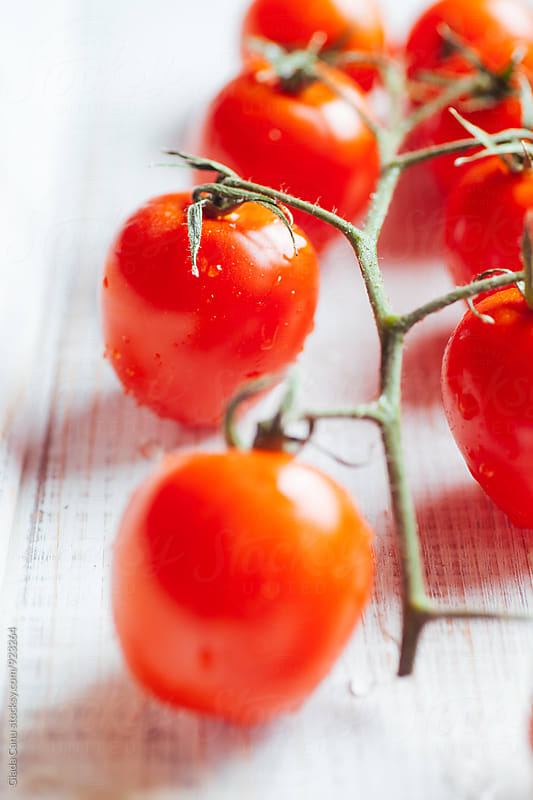 Tomatos by Giada Canu for Stocksy United