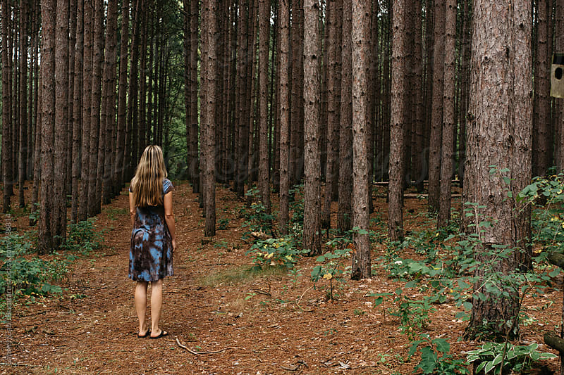 Blonde woman in a pine tree forest by Gabriel (Gabi) Bucataru for Stocksy United