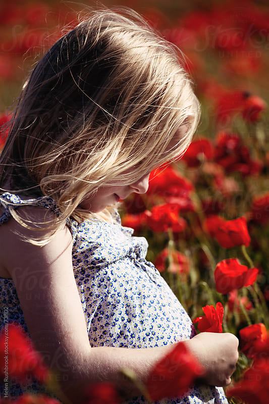 Female child in a field of red poppies by Helen Rushbrook for Stocksy United