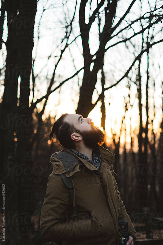 Handsome Bearded Man Standing in a Woods and Looking Up by Katarina Radovic for Stocksy United