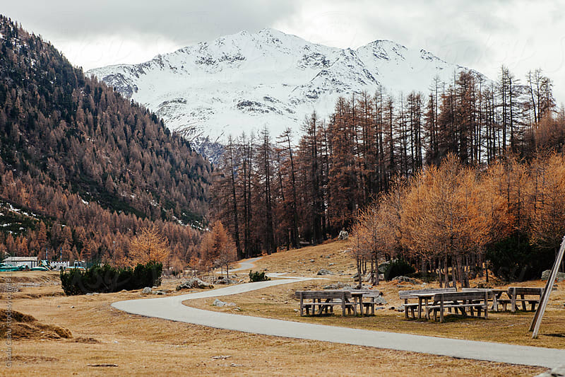 Livigno - Italy by Giada Canu for Stocksy United