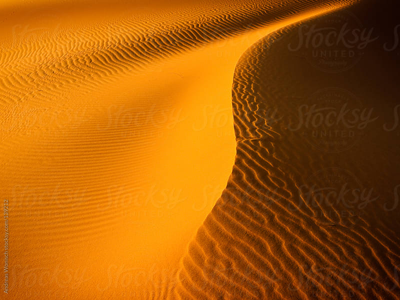 Pattern and Lines in Desert Sand Dunes by Andreas Wonisch for Stocksy United