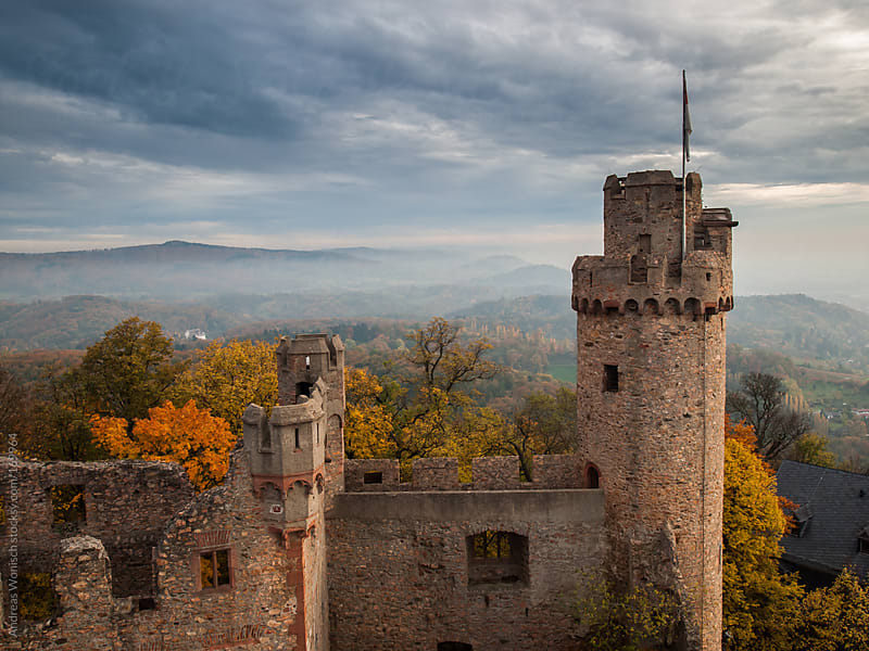 View from Castler over Fall Forest Hills by Andreas Wonisch for Stocksy United