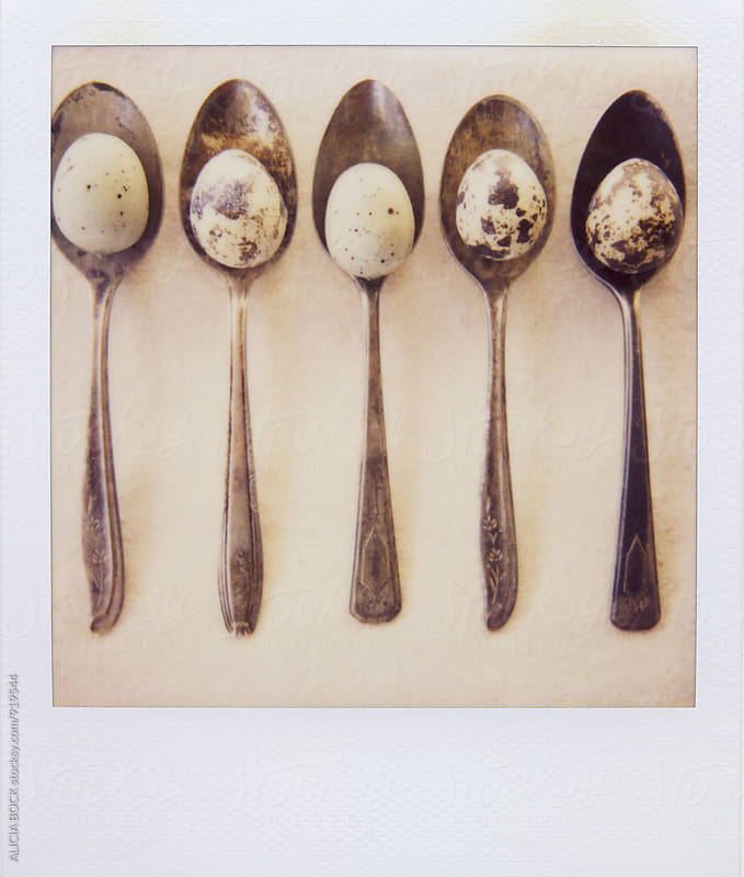 Polaroid Photograph Of Quail Eggs Resting On Vintage Spoons by ALICIA BOCK for Stocksy United