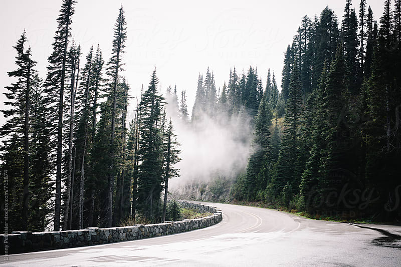 Clouds drifting through mountain pass trees. by Danny Pellissier for Stocksy United