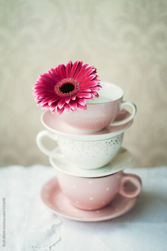 Gerbera and teacups by Ruth Black for Stocksy United