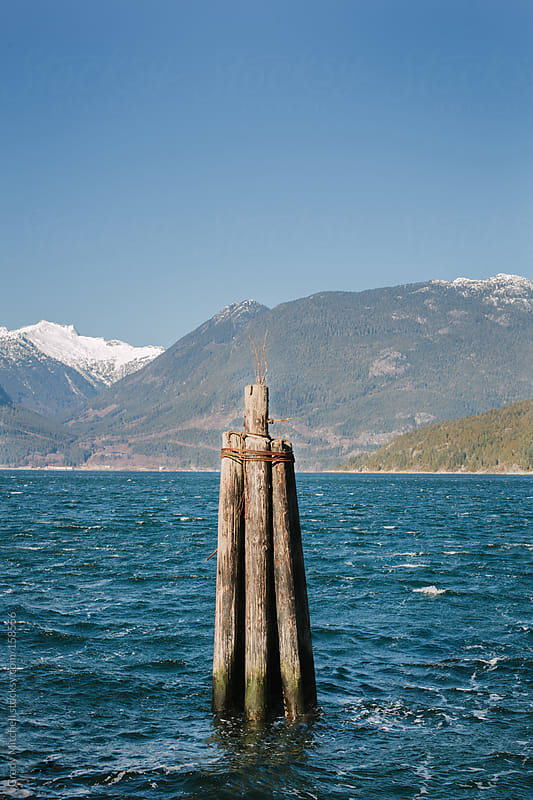Wooden Post In The ocean by Grady Mitchell for Stocksy United
