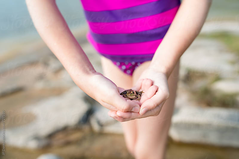 Little Girl Holding Frog on a Rocky Northern Cottage Lakeshore on Warm Sunny Summer Day by JP Danko for Stocksy United