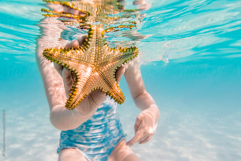 Little Girl Showing Starfish Swimming Snorkeling Underwater at All Inclusive Caribbean Resort White Sand Beach by JP Danko for Stocksy United