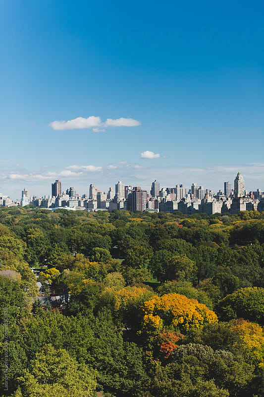 New York City Skyline and Central Park by Lauren Naefe for Stocksy United
