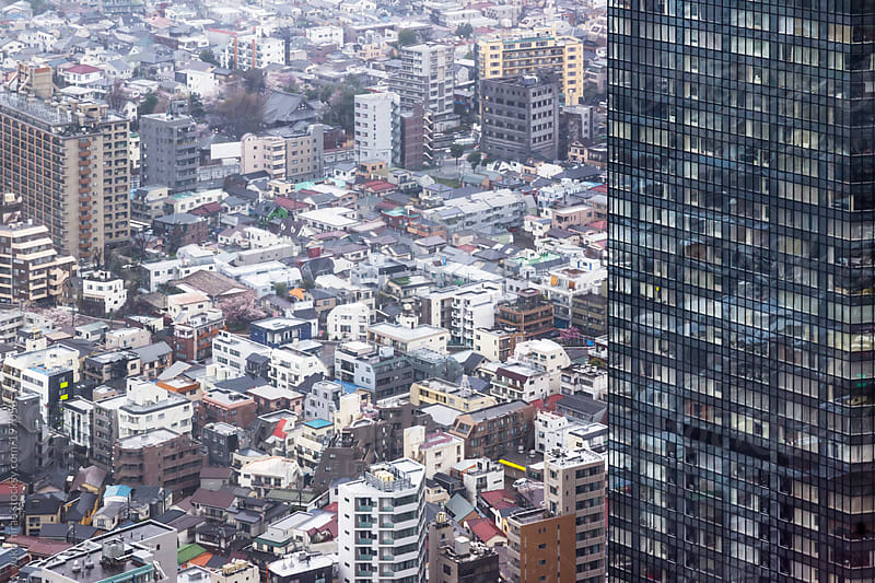 Dense houses and buildings in downtown Tokyo by yuko hirao for Stocksy United