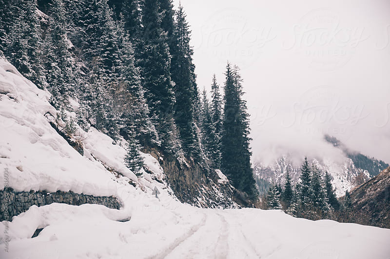 Beautiful photo of snowy road by Andrey Pavlov for Stocksy United