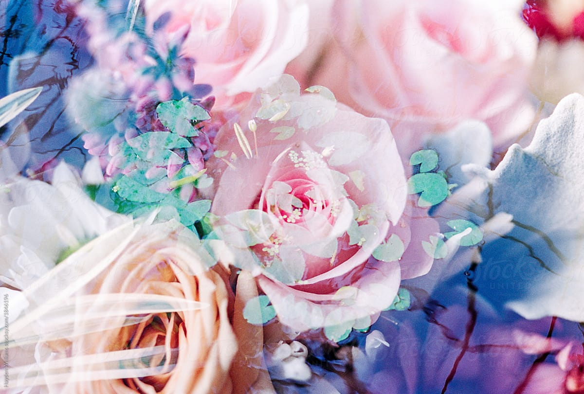 Double Exposure Of Pink Floral Bouquet With Lily Pads On Water