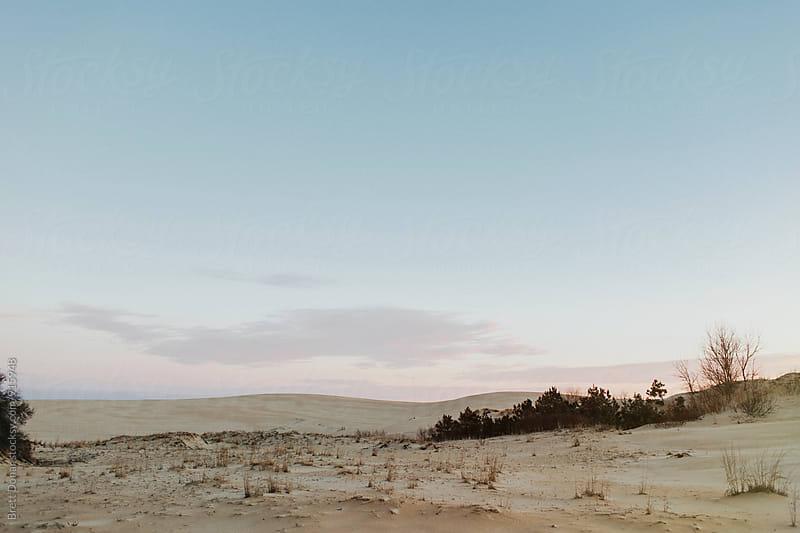 Jockey's Ridge Sand Dunes by Brett Donar for Stocksy United