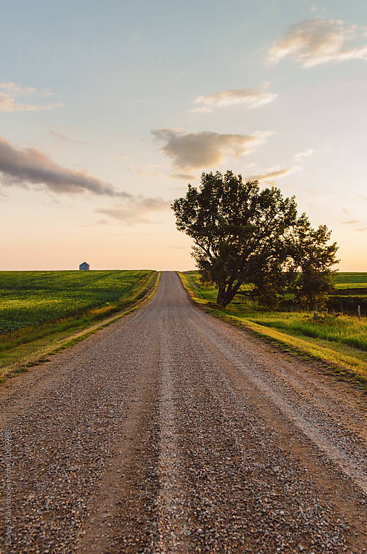 Gravel road through farmers field at dusk by Carey Shaw for Stocksy United