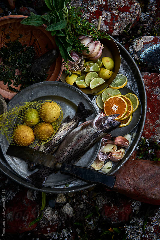 View on food ingredients for fish dish by Trent Lanz for Stocksy United