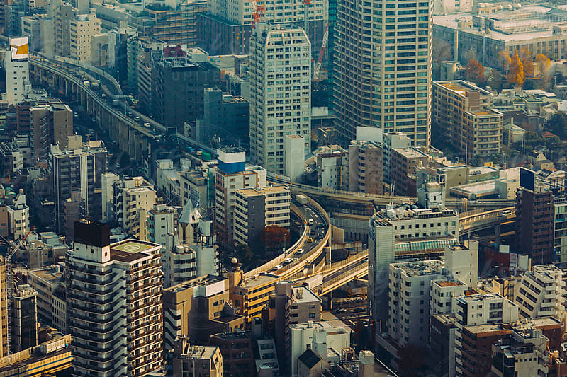 Aerial view of Tokyo, Japan by German Parga for Stocksy United