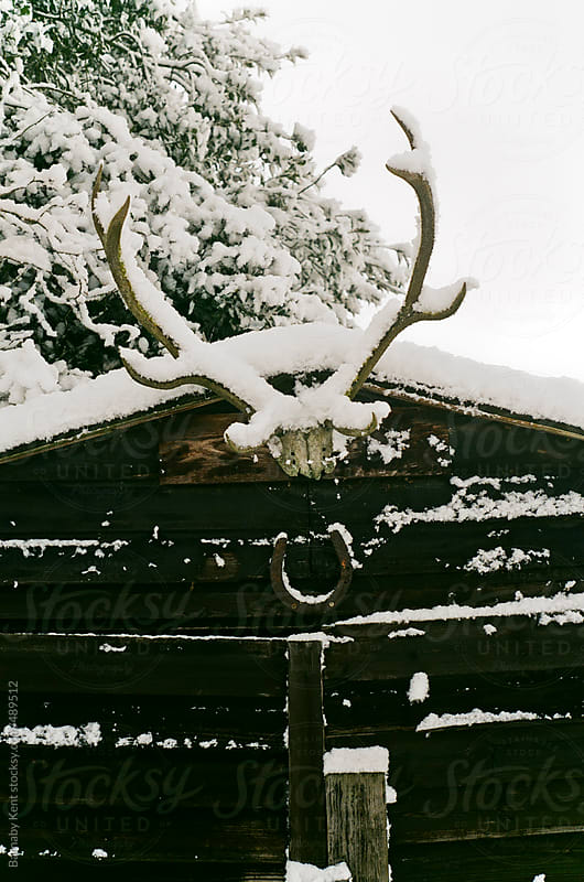 Shed In Winter by Barnaby Kent for Stocksy United