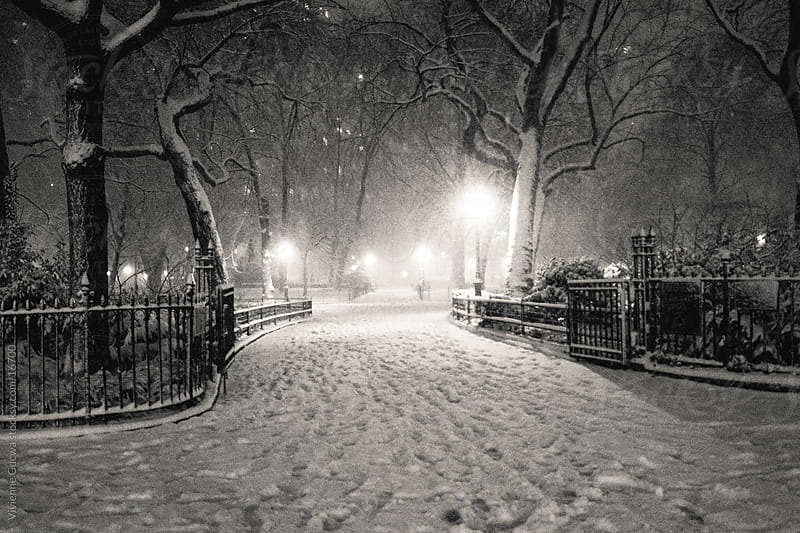 New York Winter - Snow at Night by Vivienne Gucwa for Stocksy United