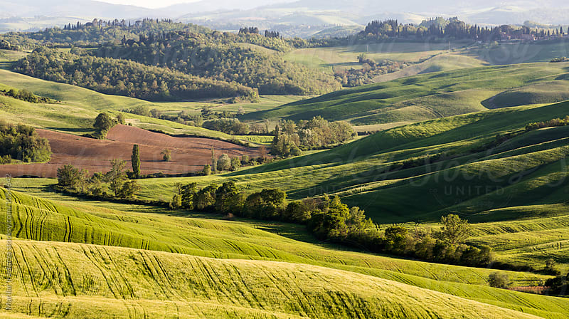 Tuscan rural landscape by Marilar Irastorza for Stocksy United