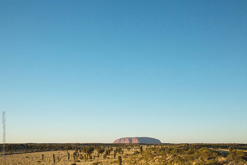 Central Australia. by John White for Stocksy United