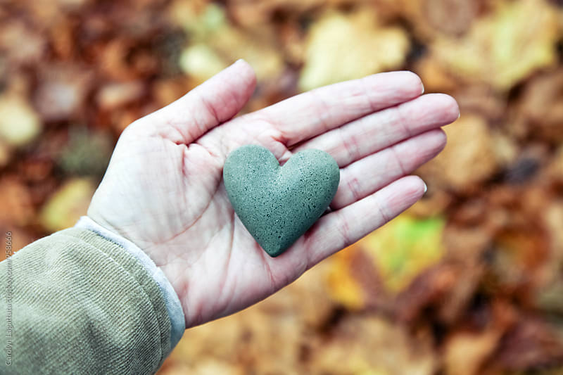 Hand holding a rock heart over a fall leaf background by Carolyn Lagattuta for Stocksy United