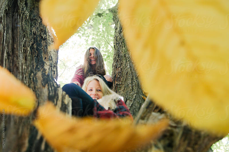 Two females climb a tree on an autumn New England day  by HOWL for Stocksy United