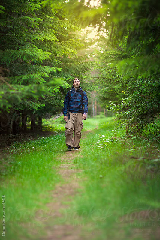 Man walking through the fir forest. by Mosuno for Stocksy United