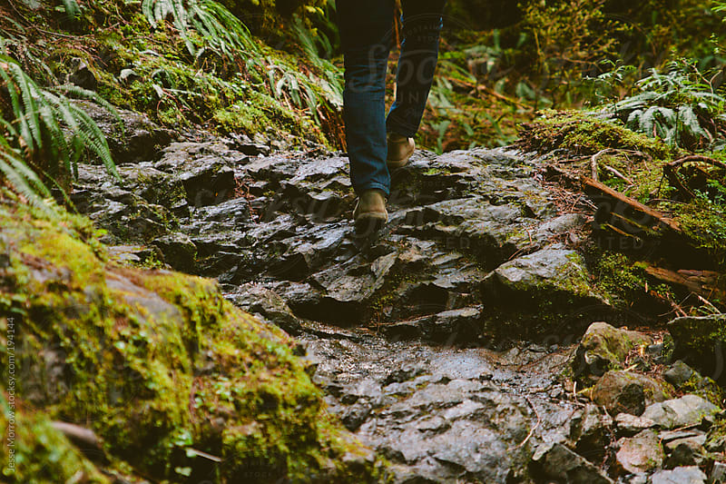 Young man hikes through forest by Jesse Morrow for Stocksy United