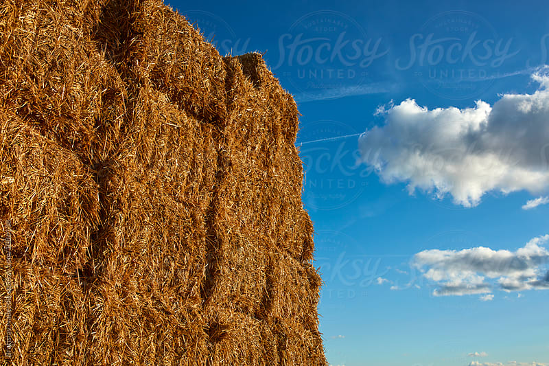 Bales of hay by Bratislav Nadezdic for Stocksy United