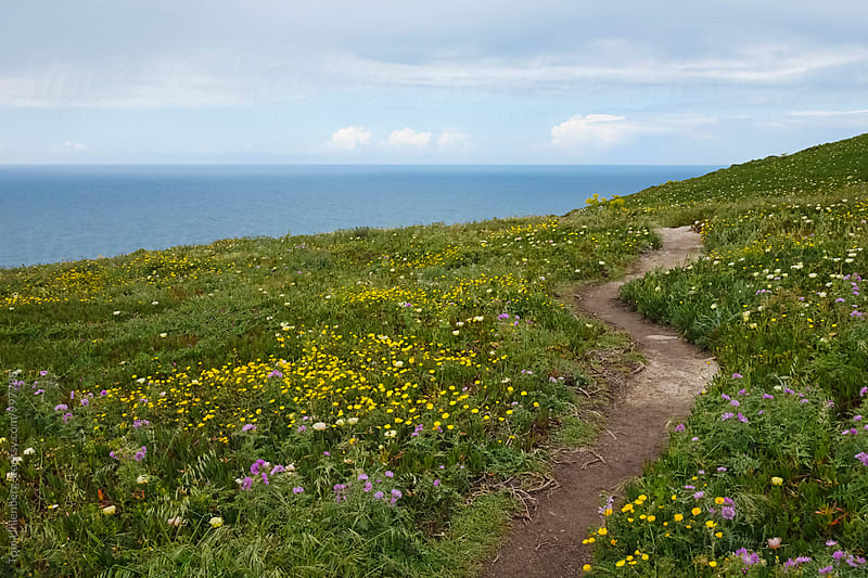 The Landscape of Cape Roca (Cabo da Roca) in Portugal - Westernmost Point of Continental Europe by Tom Uhlenberg for Stocksy United