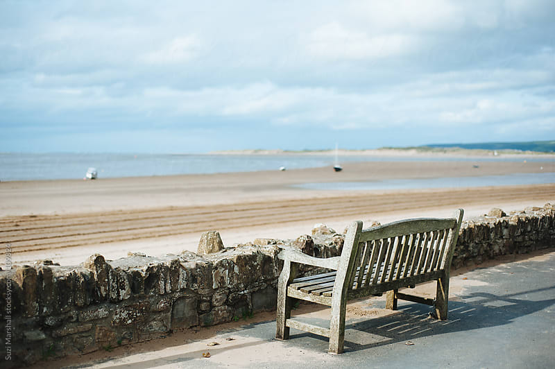 Wooden bench at the beach by Suzi Marshall for Stocksy United