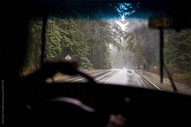 Driving down a rainforest road in the rain from inside of vehicle by Christian Tisdale for Stocksy United