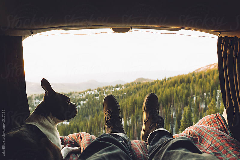 Boston Terrier and a Sunrise by Jake Elko for Stocksy United