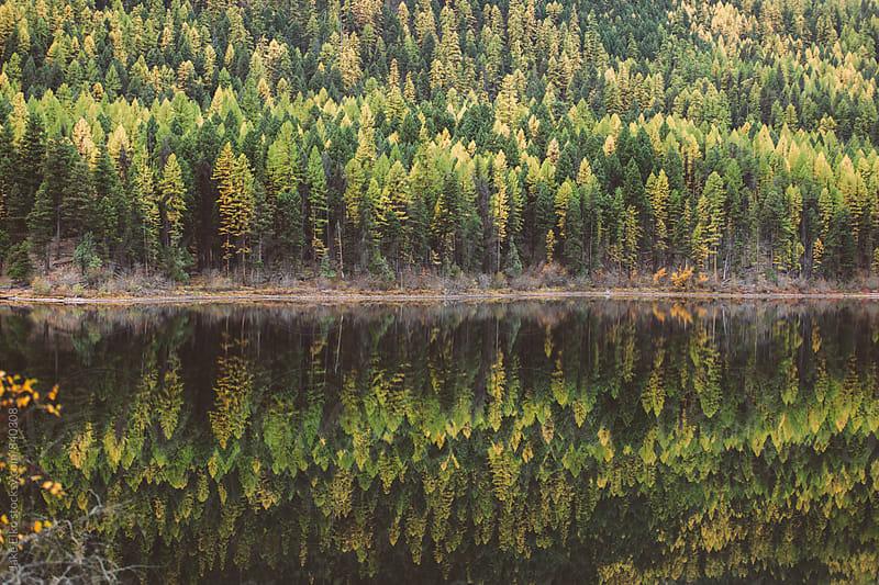 Montana Reflections Near Glacier by Jake Elko for Stocksy United