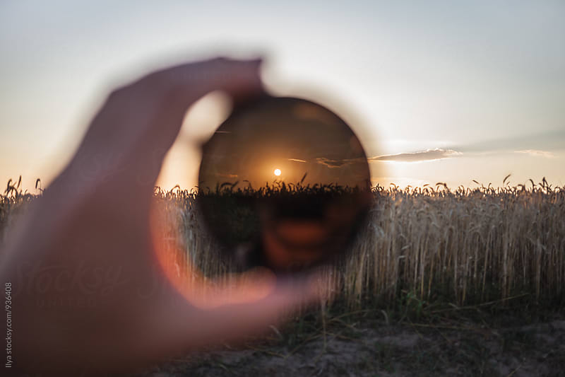 View through the lens filter to the sunset on the dry field by Ilya for Stocksy United