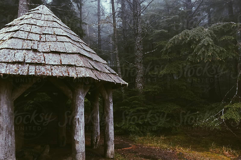 A hut in a foggy forest  by TJ Macke for Stocksy United