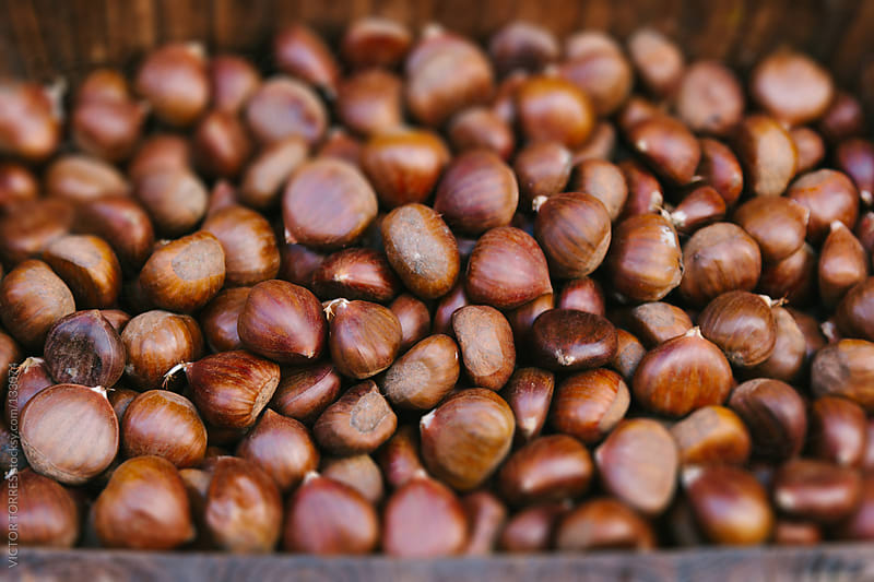 Chestnuts in a Wooden Box by VICTOR TORRES for Stocksy United