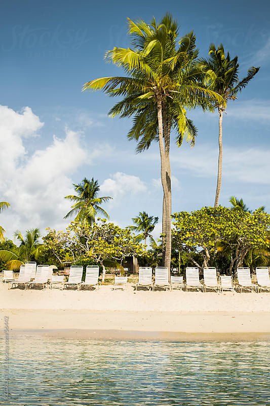 Lounge chairs line a sandy beach on a tropical beach. by RZ CREATIVE for Stocksy United