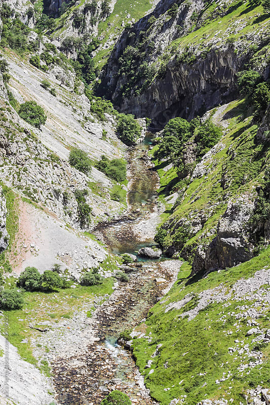 River in Picos de Europa by Luca Pierro for Stocksy United