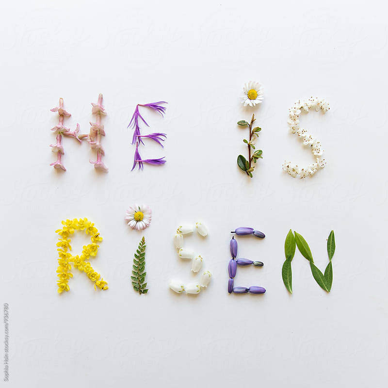 He Is Risen - Flower Typography by Sophia Hsin for Stocksy United