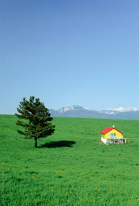 Red and Yellow house in field, Hokkaido, Japan, Asia by Gavin Hellier for Stocksy United