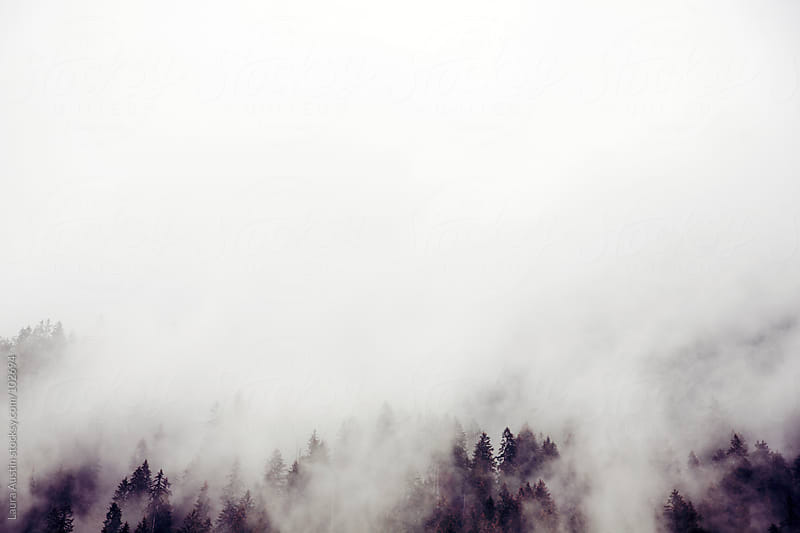 Fog rolling over hills in Austria by Laura Austin for Stocksy United