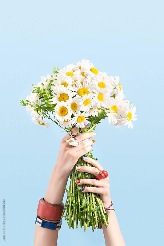 Daisy Bouquet by Lumina for Stocksy United