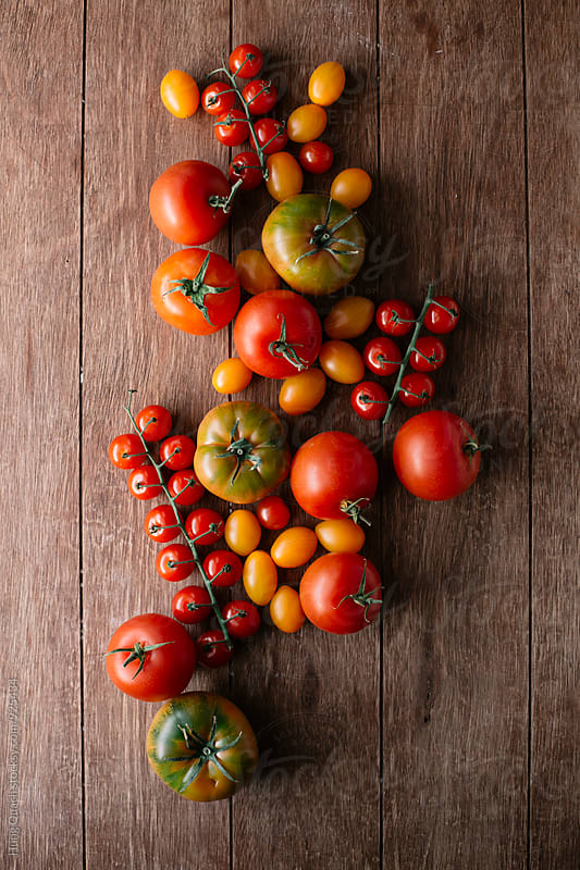 Tomatoes by Hung Quach for Stocksy United