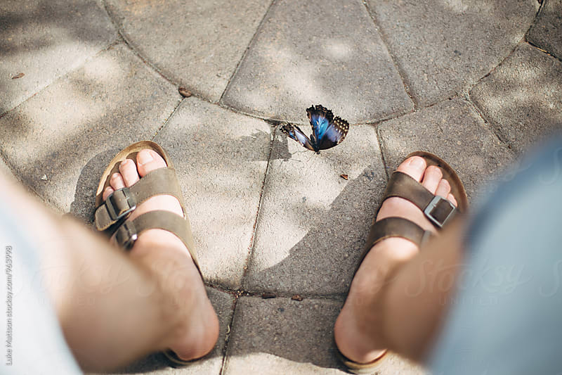 Blue Butterfly Fluttering Between Feet Of Man Wearing Sandals by Luke Mattson for Stocksy United