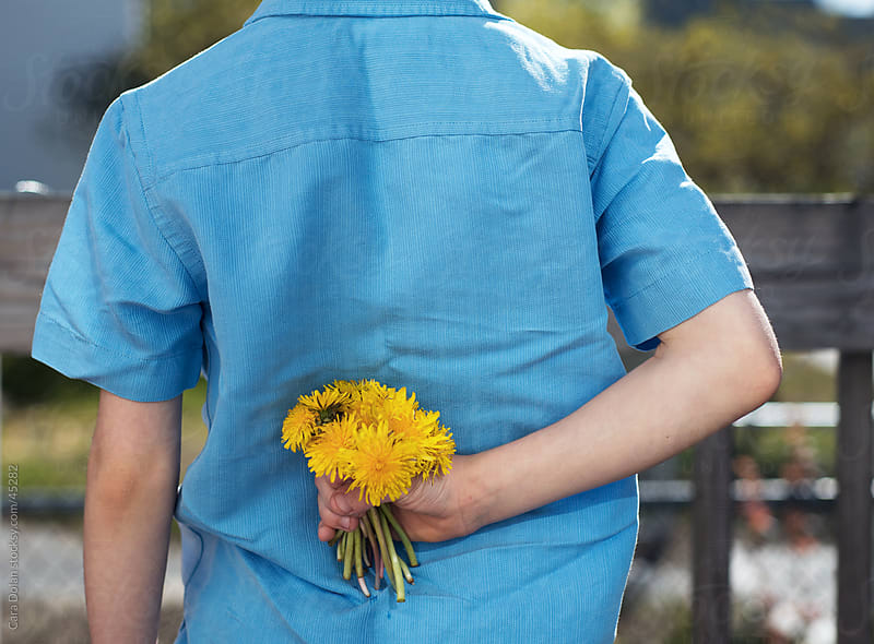 Boy hides bouquet of dandelion flowers behind his back by Cara Slifka for Stocksy United